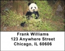 Click on Panda Bears Address Labels For More Details