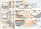 Click on Japanese Cuisine Accounts Payable Designer Business Checks For More Details
