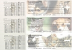 Click on Veterinarian Payroll Designer Business Checks  For More Details