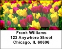 Click on Tulips Address Labels For More Details