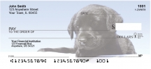 Click on Black Lab Puppies  Personal Checks For More Details