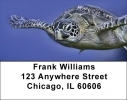Click on Sea Turtles Under Water Address Labels For More Details