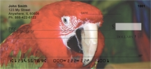 Click on Parrot - Macaws Up Close  Personal Checks For More Details