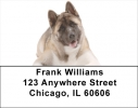 Click on Akita Labels - Akita Address Labels For More Details