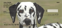 Click on Dalmatians - Dalmatian Personal Checks For More Details