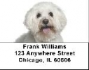 Click on Bichon Frise Labels - Bichon Frise Address Labels For More Details
