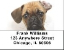 Click on Puggles Address Labels - Puggle Labels For More Details