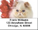 Click on Persian Cats Address Labels - Cat Labels For More Details