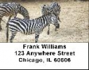 Click on Zebra Labels - Zebras Address Labels For More Details