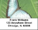 Click on Blue Morpho Butterflies Address Labels For More Details