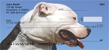 Click on Pit Bull - Pit Bulls Again Personal Checks For More Details