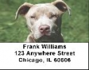 Click on Pit Bull Labels - Pit Bull Friends Address Labels For More Details