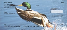 Click on Duck - Mallard Ducks  Personal Checks For More Details