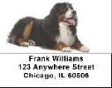 Click on Bernese Labels - Bernese Mountain Dog Address Labels For More Details