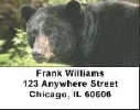 Click on Black Bear Labels - Black Bears Address Labels For More Details