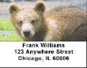 Click on Grizzly Bear Cub Labels - Grizzly Bear Cubs Address Labels For More Details