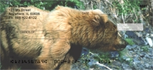 Click on Kodiak Bear - Kodiak Bears  Personal Checks For More Details