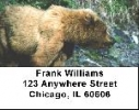 Click on Kodiak Bear Labels - Kodiak Bears Address Labels For More Details