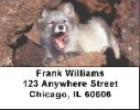 Click on Fox Labels - Arctic Fox Address Labels For More Details