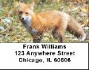 Click on Fox Labels - Red Fox Address Labels For More Details