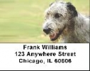 Click on Irish Wolfhound Address Labels - Wolfhound Labels For More Details