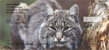 Click on Bobcat - Bobcats Personal Checks For More Details