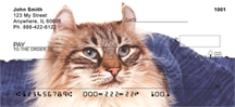 Click on American Curl - American Curl Cat  Personal Checks For More Details