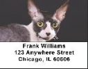 Click on Cornish Rex Labels - Cornish Rex Cat Address Labels For More Details
