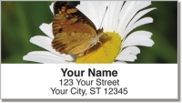Click on Butterfly Garden Address Labels For More Details
