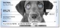 Click on Black Lab Pup Personal Checks For More Details