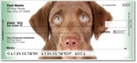 Click on Chocolate Lab Pup Personal Checks For More Details