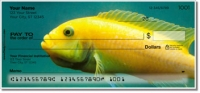 Click on World of Fish Personal Checks For More Details