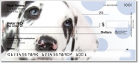 Click on Great Dane Pup Personal Checks For More Details