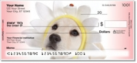 Click on Yellow Lab Pup Checks For More Details