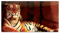 Click on Zoo Animal Checkbook Cover For More Details