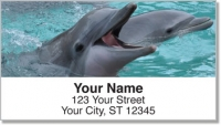 Click on Dolphin Address Labels For More Details