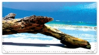 Click on Driftwood Checkbook Cover For More Details