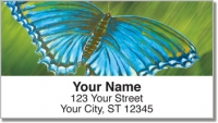 Click on Colored Wings Address Labels For More Details