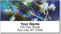 Click on Bacca Tree Address Labels For More Details