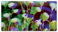 Click on Bacca Floral Checkbook Cover For More Details
