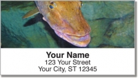 Click on Freshwater Game Fish Address Labels For More Details