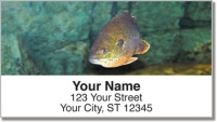 Click on Bluegill Address Labels For More Details