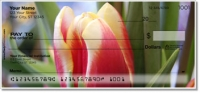 Click on Tulip Personal Checks For More Details