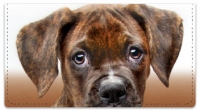 Click on Boxer Pup Checkbook Cover For More Details
