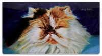 Click on Shahmiri Cats Checkbook Cover For More Details