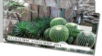 Click on Cactus Garden For More Details