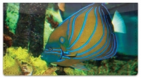Click on Blue Ring Angelfish Checkbook Cover For More Details
