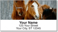 Click on Horse Address Labels For More Details