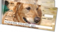 Click on Golden Retriever Side Tear Personal Checks For More Details