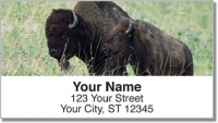 Click on American Bison Address Labels For More Details